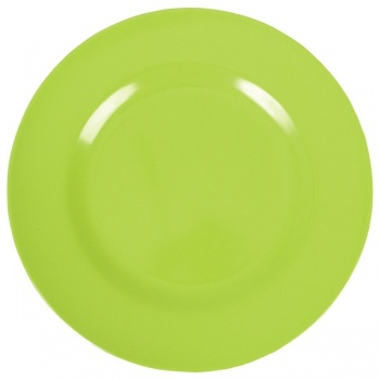 Melamine Side Plate in Green