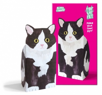 Rosie flo pop up pet black+white cat