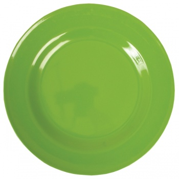 Melamine Dinner Plate in Apple Green